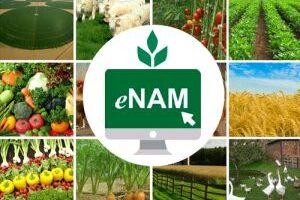 enam.gov.in e-NAM किसान पंजीकरण, मंडियों की सूची व हेल्पलाइन