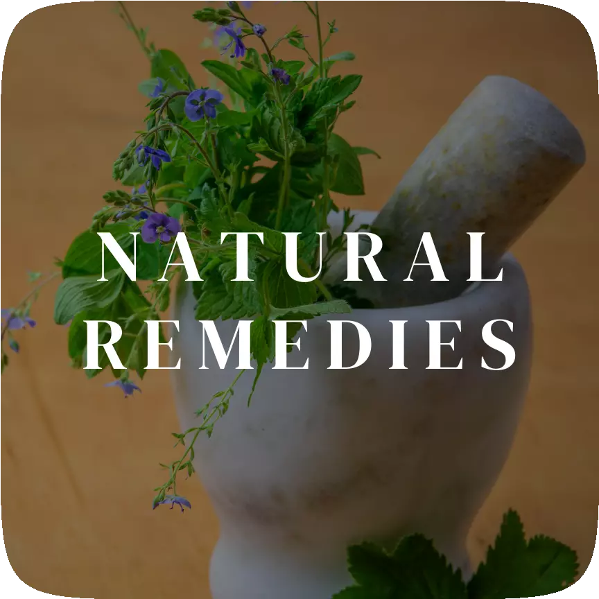 Natural Remedies | HealthInsta