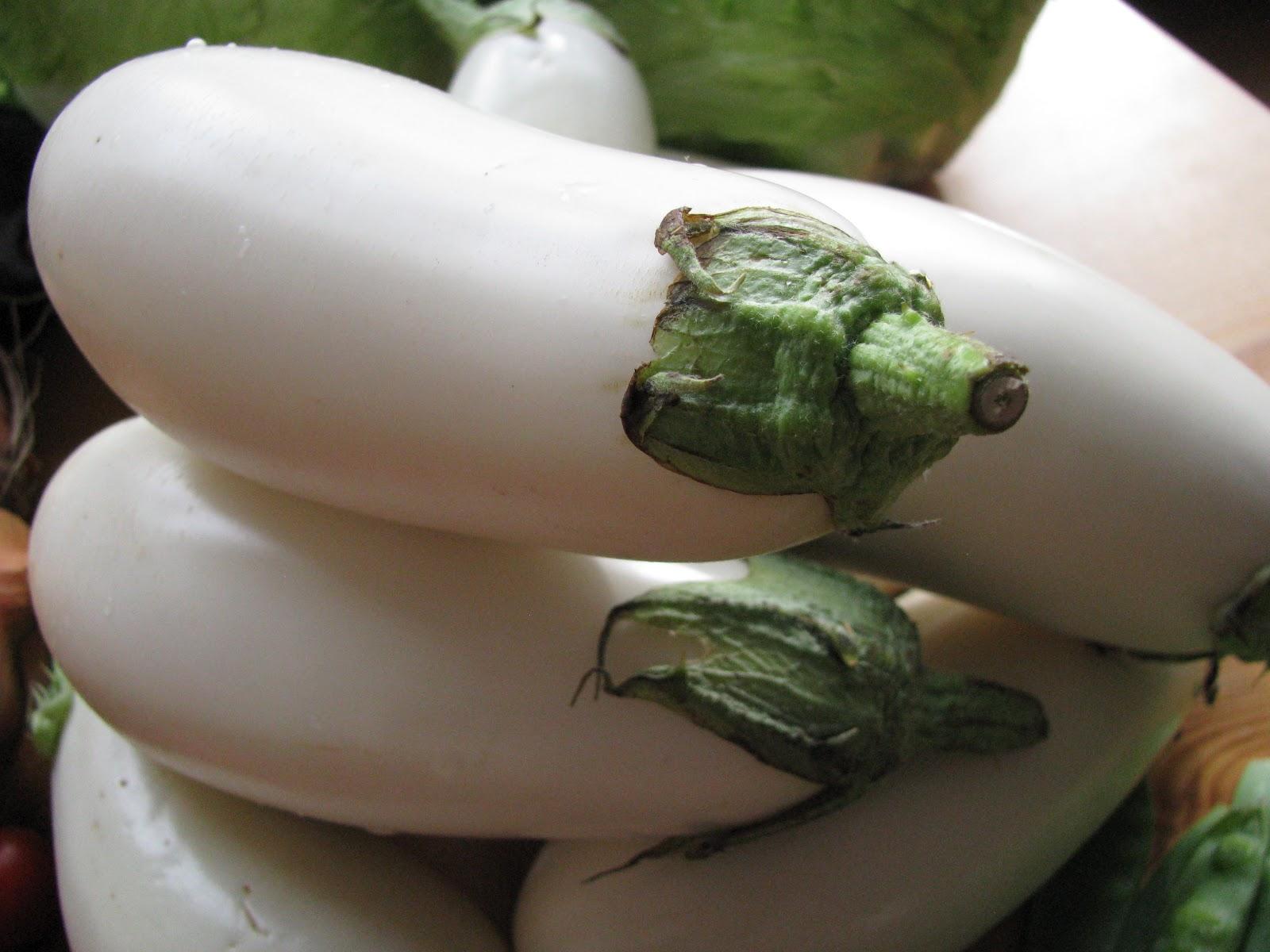 L\'amore per la cucina di Sonia Mascioli: Le melanzane