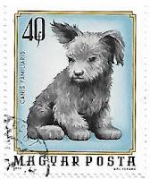 Selo Filhote de cachorro