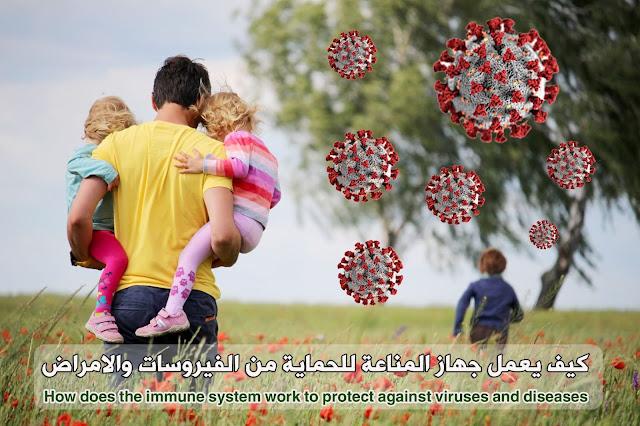 كيف يعمل جهاز المناعة لحمايتنا من الفيروسات والامراض