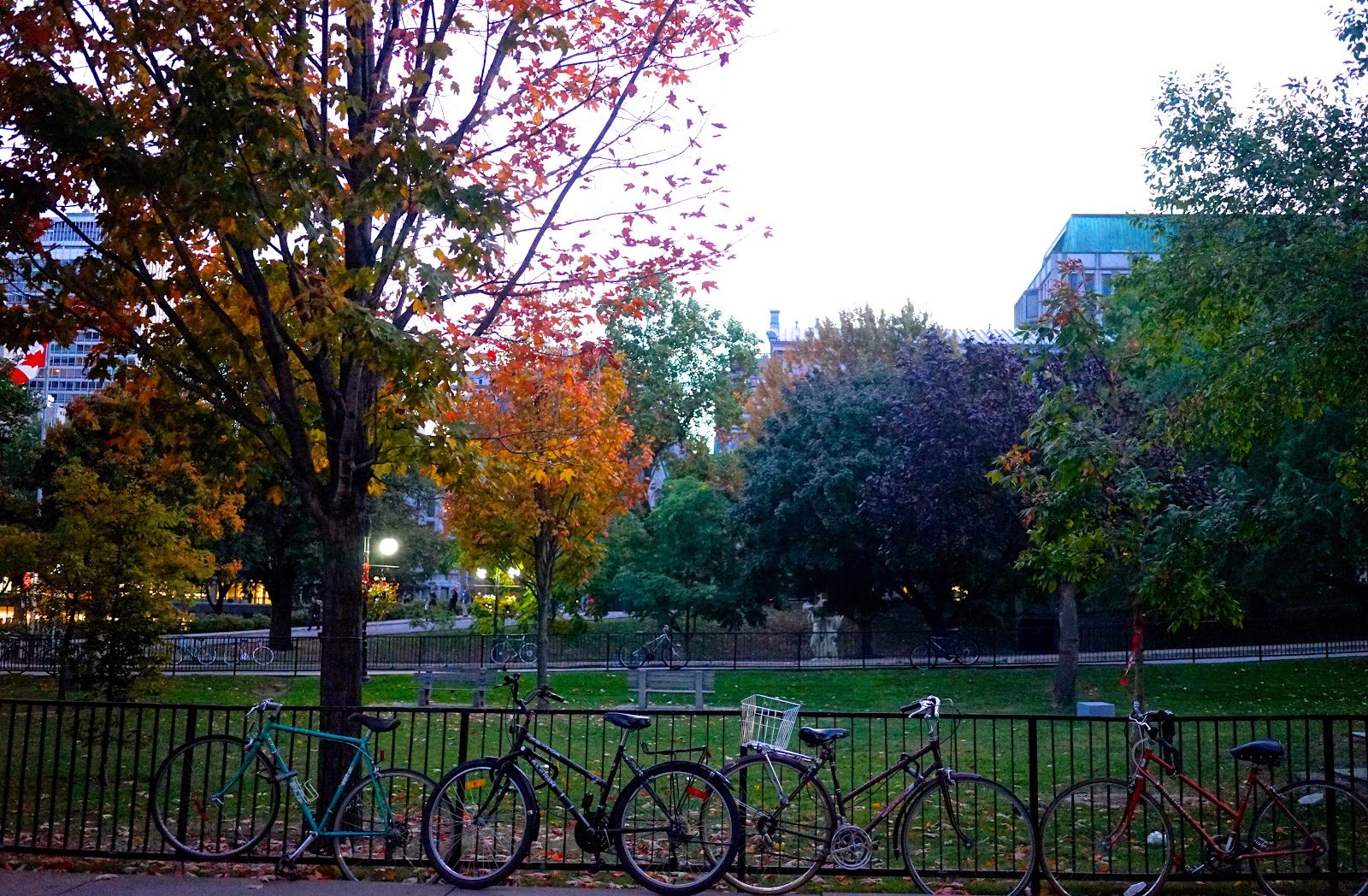 McGill University fall