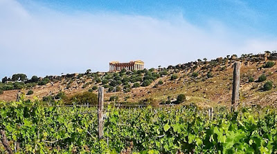 sicilia en primeur anteprima vino