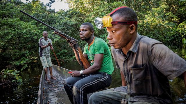 Trois hommes équipés d'une lampe frontale à diodes électroluminescentes voyagent pour un voyage de chasse nocturne dans la forêt tropicale du Congo. REUTERS / THOMAS NICOLON