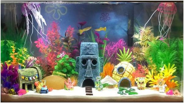 6 Ide Hiasan Aquarium yang Hemat di Kantong, Murah Tapi Gak Murahan!