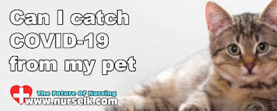 Can I catch COVID-19 from my pet?