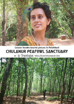 Chulanur Peafowl Sanctuary - Places to visit near Palakkad Kerala - Pinterest