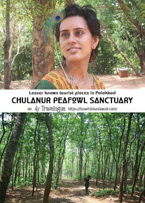 Chulanur Peafowl Sanctuary - Places to visit near Palakkad Kerala - Pinterest