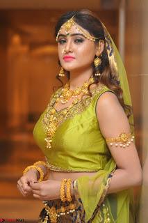Sony Charishta in Green Choli Ghagra Transparent Chunni Ethnic Wear March 2017 026.JPG