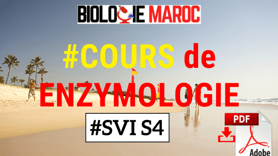 COURS Enzymologie et Biochimie Métabolique SVI S4 - PDF