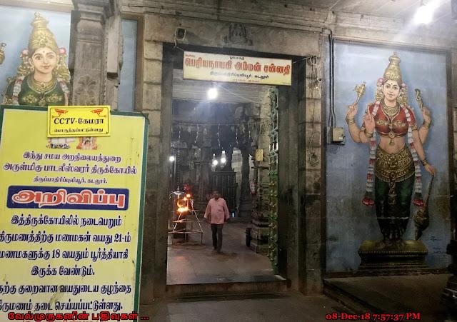 Padaleeswarar Temple Tirupathiripuliyur