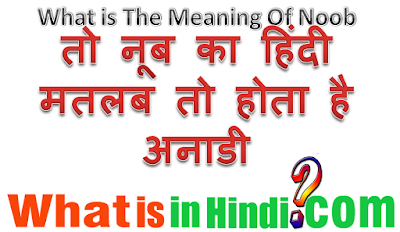 What is the meaning of Noob in Hindi