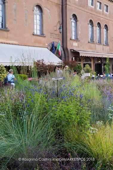 Gramineas ornamentales y plantas vivaces en jardin de Piet Oudolf Piazza Vecchia