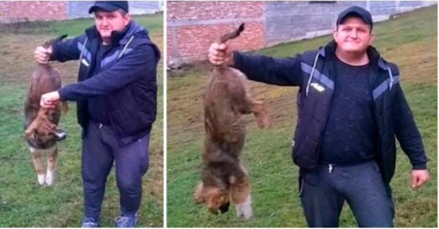 Мужчина Из Болгарии Убил Щенка, Чтобы Попозировать С Ним Перед Камерой
