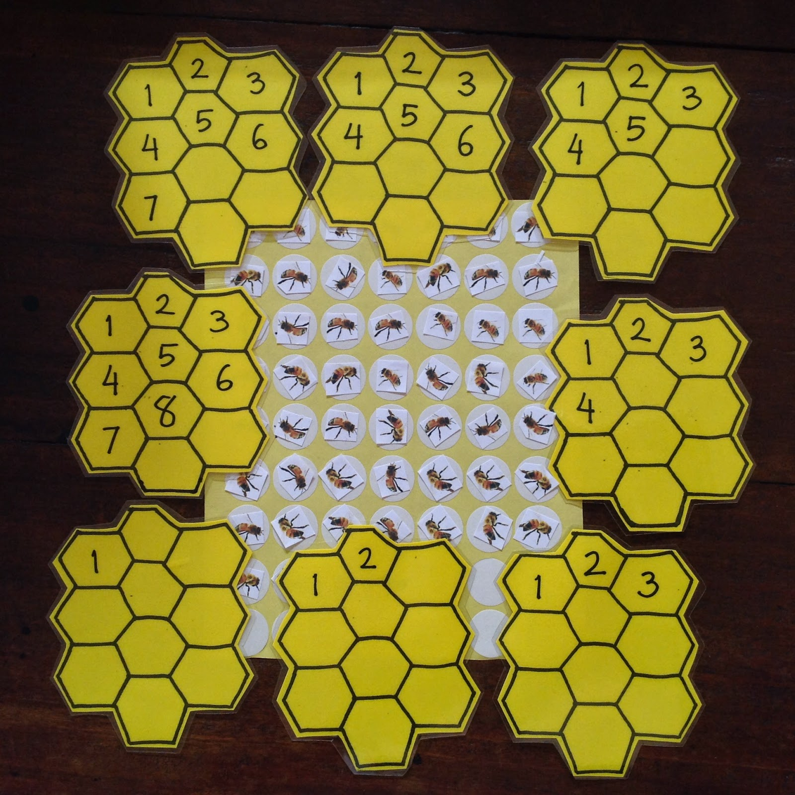 Raising A Montessorian Science Life Cycle Of A Bee