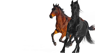 [Music Download] Lil Nas X – Old Town Road mp3 free download