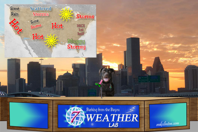 Weather forecast with Paisley the Weather Lab