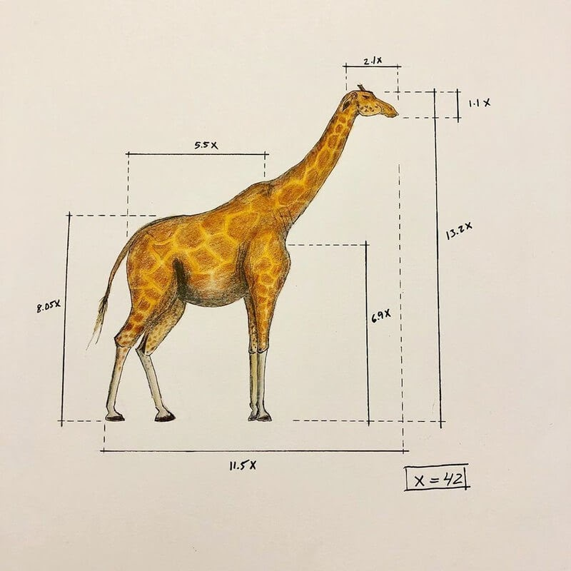 02-Giraffe-Ran-Shapira-Animal-Drawings-from-a-Sculptor-s-Perspective-www-designstack-co