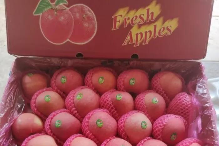 manfaat apel fuji untuk kesehatan tubuh