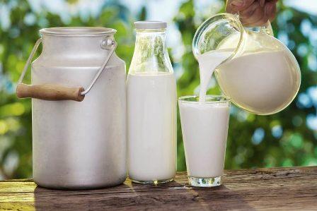 Susu (Pengertian, Komposisi, Kandungan Gizi, Jenis dan Manfaat)