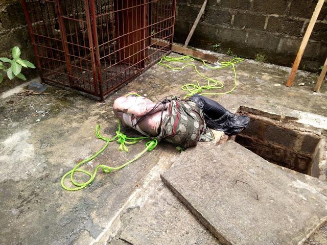 dead body: lawson james  blog news