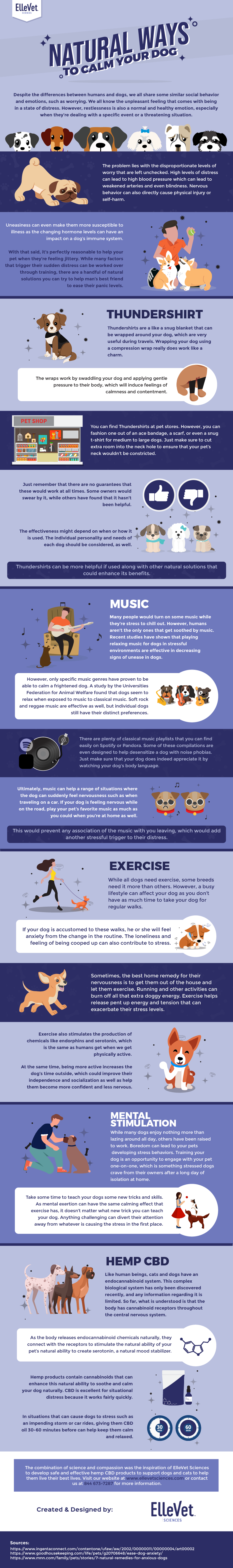 Natural Ways to Calm Your Dog #infographic