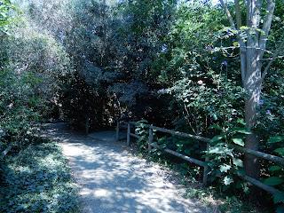 Parco Gallorose(ガッロロゼ公園)園内風景