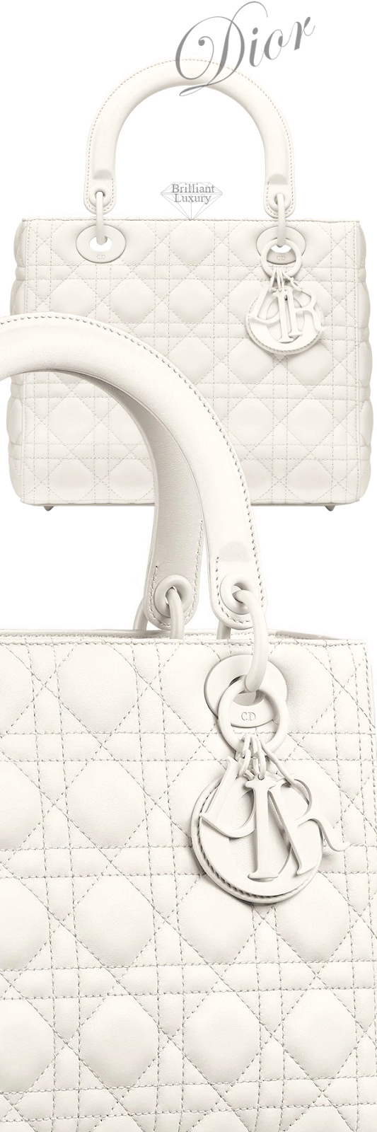 Dior Lady Dior Matte Latte Bag #brilliantluxury