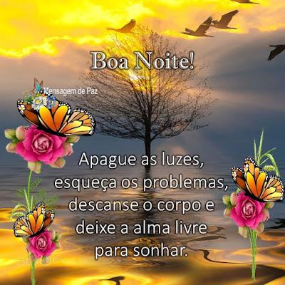 Apague as luzes,   esqueça os problemas,   descanse o corpo e   deixe a alma livre   para sonhar.  Boa Noite!