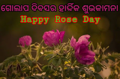 Rose day odia wishes