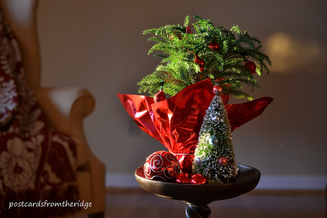 Postcards from the Ridge. Small trees make great tabletop holiday decor. Lots of great ways to use natural items in your home decor.