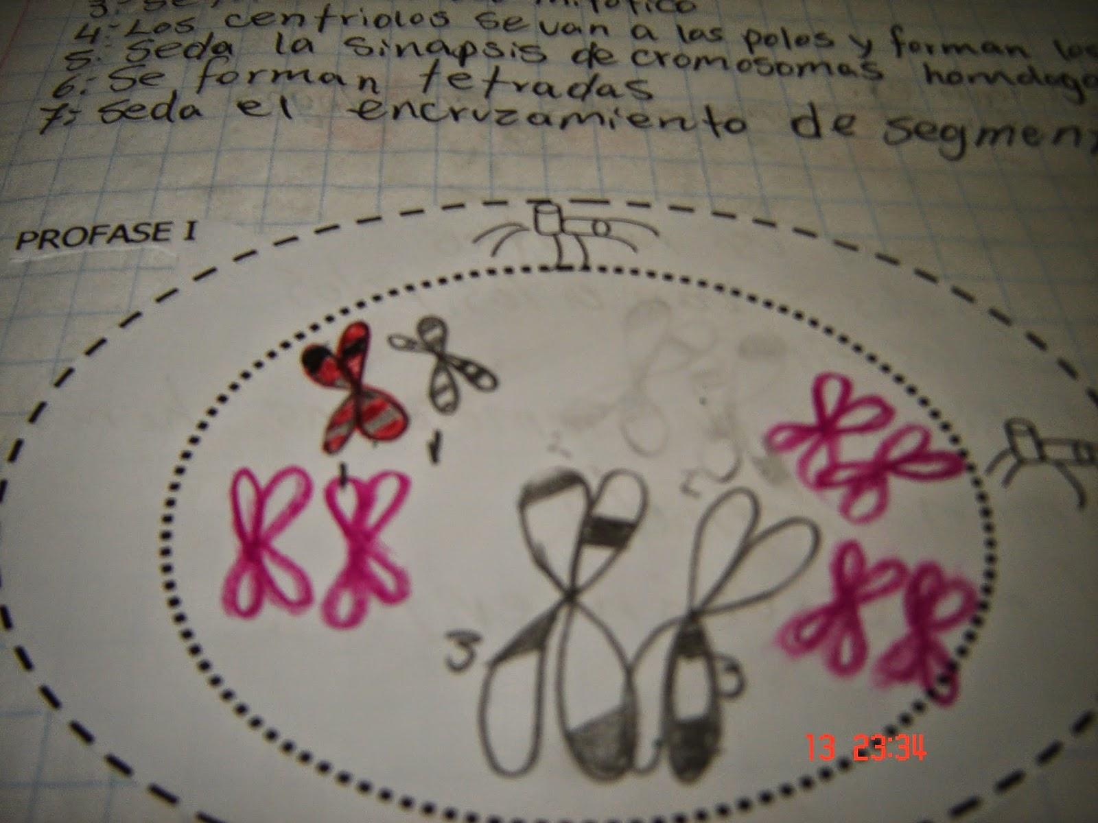 Biologia Febrero