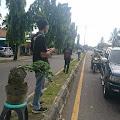 Nusakambangan Art Bonsai Peduli Banjir Di Cilacap