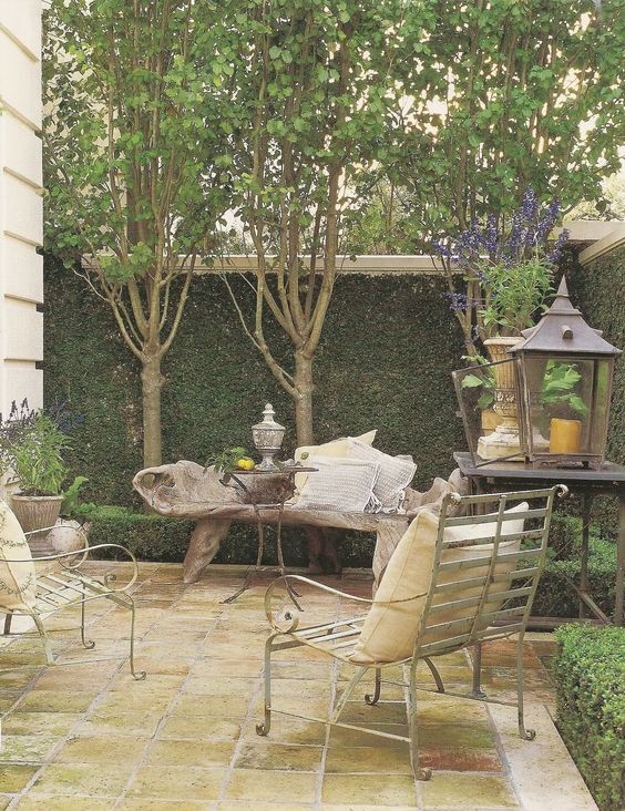 French courtyard with walls climbing with vines - Pamela Pierce.