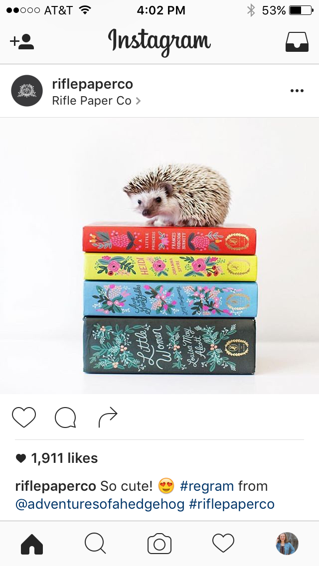 High Five for Friday instagram round up sales july 4th