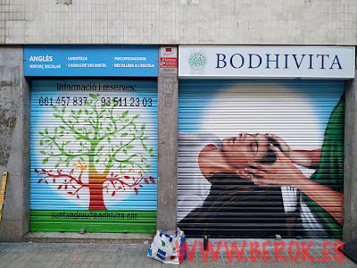 laca antigraffiti