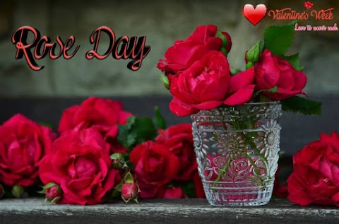 Importance of Rose Day 2020.