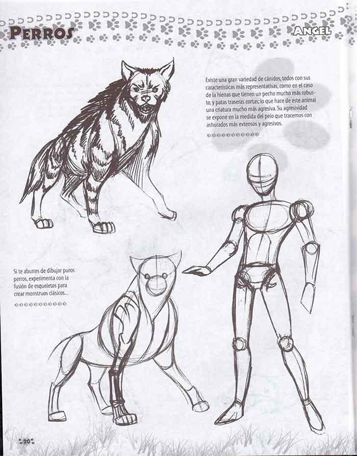 Descarga: DibujArte #37 - Especial de Animales 2.