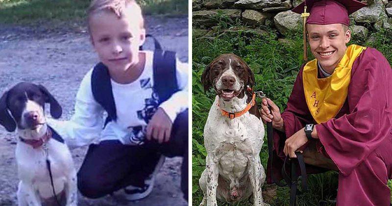 Un nouveau diplômé et son chien bien-aimé recréent une photo de leur premier jour d'école.