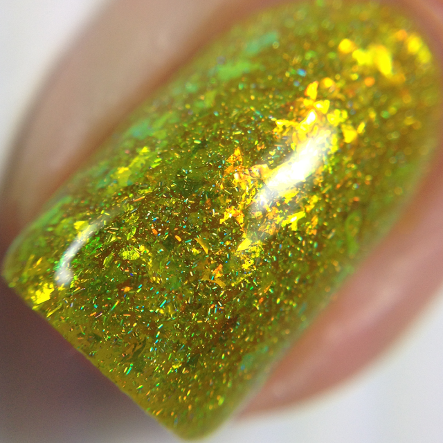 KBShimmer-Something To Taco 'Bout