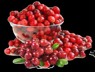 Cranberry, mencegah ISK, Infeksi Saluran Kemih, Prive Uricran, Combiphar