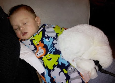Baby in monster pajamas sleeping next to a cat