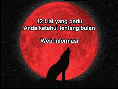 Bulan merah dan serigala