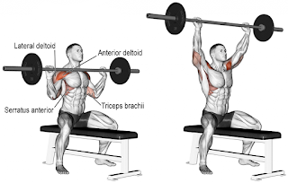 Top-5-Exercises-To-Build-Shoulders, Seared-Overhead-Barbell-Press