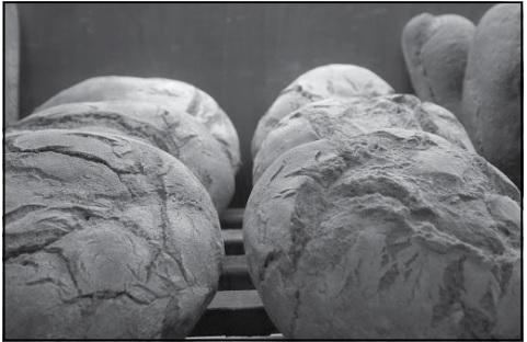Ένα πλαστό από την ιδιοκτήτρια του φούρνου που ήταν γεμάτο δραχμές