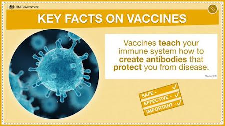 vaccine facts teach us to make antibodies