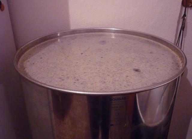 Νέα από πεύκο και ρείκι τα βαρέλια γεμίζουν με μέλι 11/10/2020