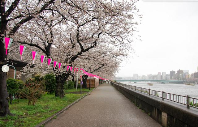 parc Sumida Tokyo