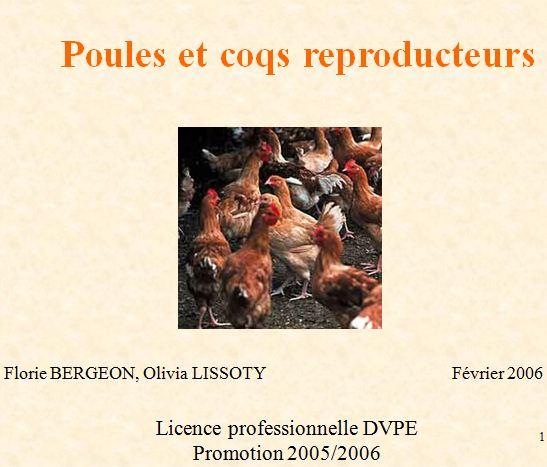 Poules et coqs reproducteurs - WWW.VETBOOKSTORE.COM