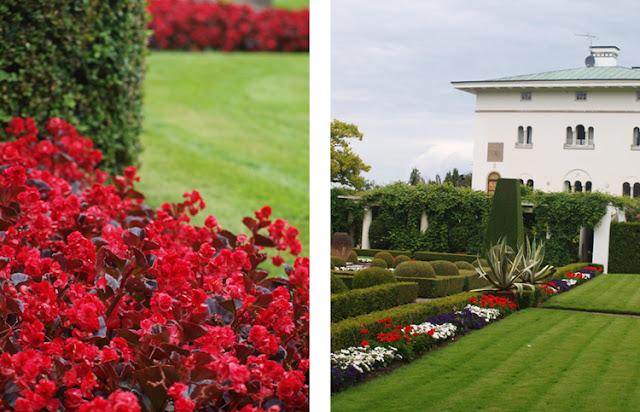 Sollindens Slot med sommerblomster